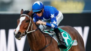 Fender will aim to give trainer Brett Cavanough the Ramornie Handicap win he craves. Picture: Getty Images