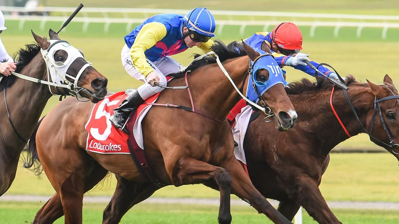 Dexelation will attempt to end a run of near-misses in Saturday's Group 3 Sir John Monash Stakes at Caulfield. Picture: Racing Photos via Getty Images