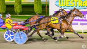 Perth pacer Shockwave is bound for Victoria after another scintillating win at Gloucester Park.
