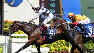 Panfield, who won the Champions & Chater Cup at Sha Tin in May, could be a contender for the Melbourne Cup. Picture: Hong Kong Jockey Club