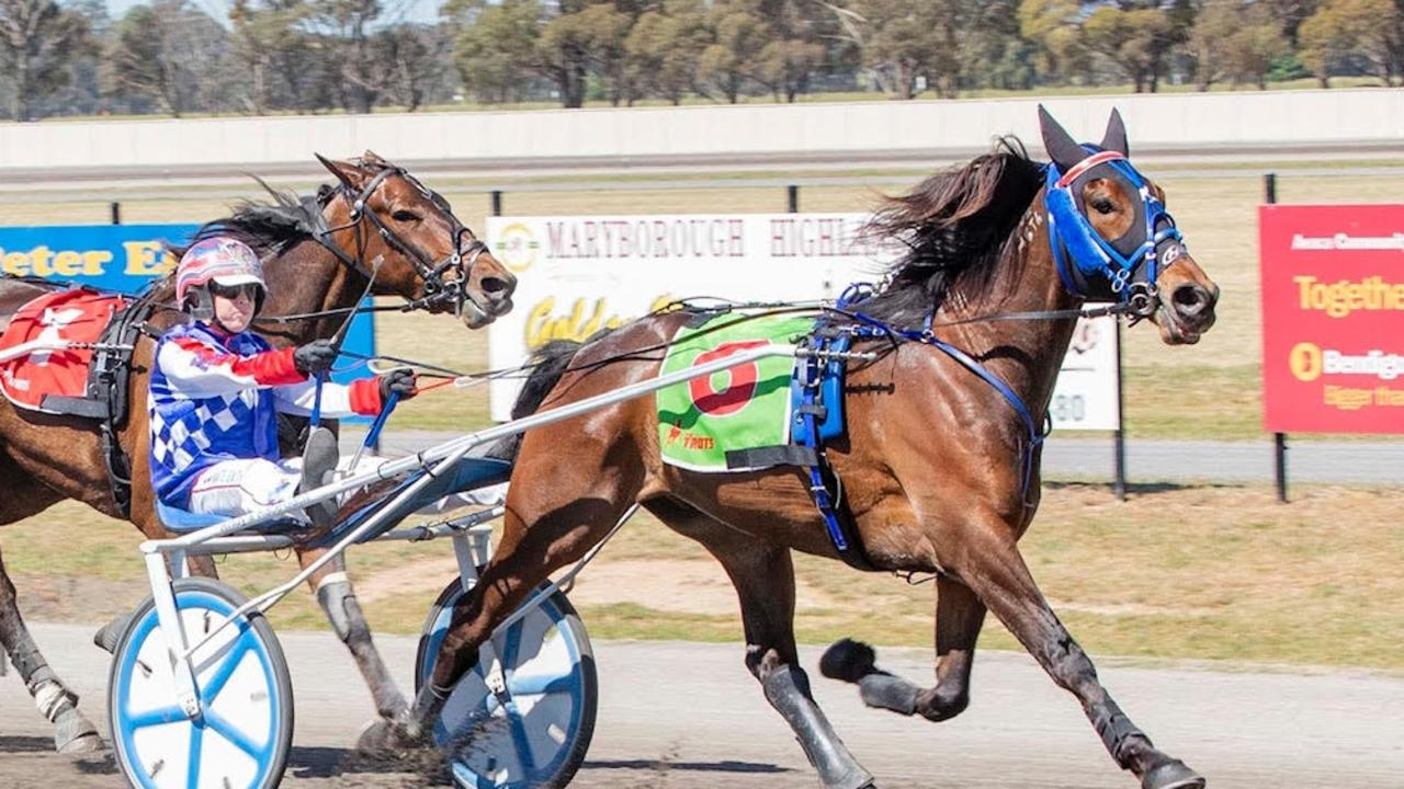 Majestuoso begin his campaign at Geelong. Picture: Stuart McCormick
