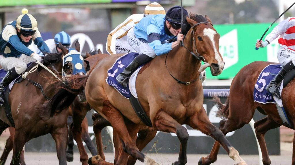 Teo Nugent steers Bartholomeu Dias to victory at Flemington. Picture: Racing Photos via Getty Images