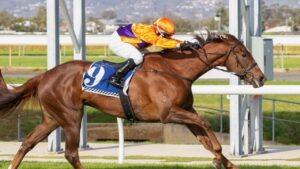 Mac 'N' Cheese scored a comfortable victory at Morphettville Parks even after missing the start. Picture: Atkins Photography