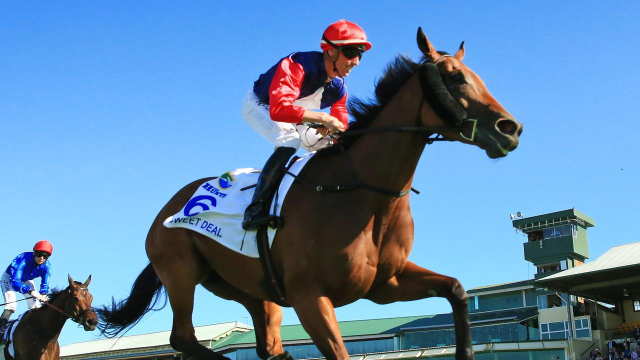Top racemare Sweet Deal will come out of retirement for a shot at the $2 million The Invitation. Picture: Mark Evans–Getty Images.