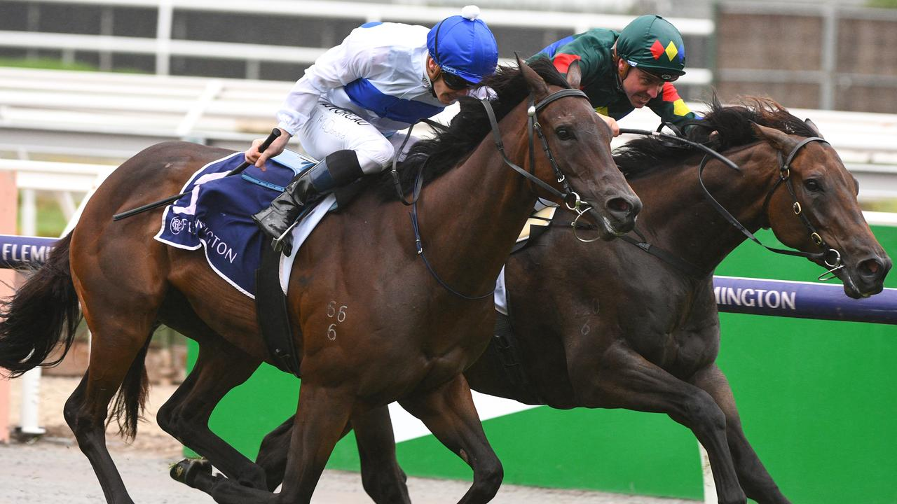 Catalyst (white) battles it out with Alligator Blood at Flemington. The winner of six races from 10 starts is now with trainer Tony Pike. Photo: AAP Image–Vince Caligiuri