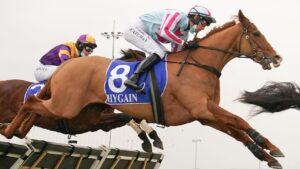 Steven Pateman guided Norway to an impressive win in the Brendan Drechsler Hurdle at Pakenham. Picture: Racing Photos