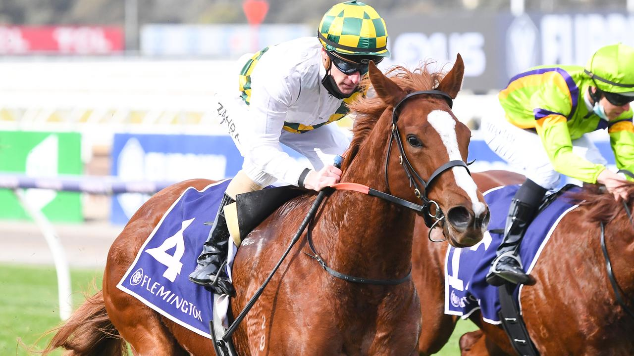 Argentia is the early favourite for the Thousand Guineas and VRC Oaks after her dominant debut win at Flemington in June. Picture : Racing Photos via Getty Images.