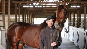 Top harness driver Luke McCarthy with King Of Swing at his Stockleigh stables. Picture: Liam Kidston