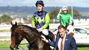 Jockey Chris Parnham is favourite to win the Australian jockeys' premiership. Photo: AAP Image/Mark Brake