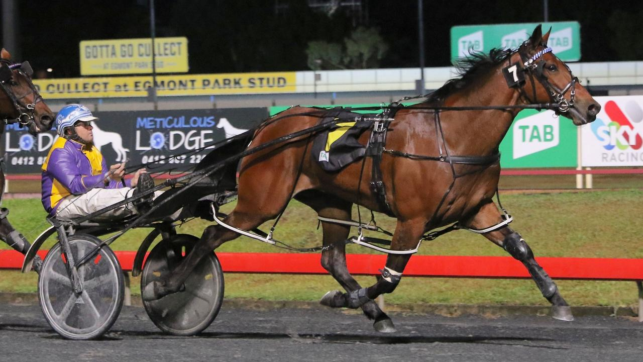 Turn It Up with Shane Graham in the sulky wins at Albion Park. Picture: Dan Costello