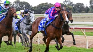 Developing filly Pammy Joy was an easy winner at Echuca last time out and will chase a city win in the VOBIS Gold Ingot at Caulfield. Picture : Racing Photos via Getty Images.