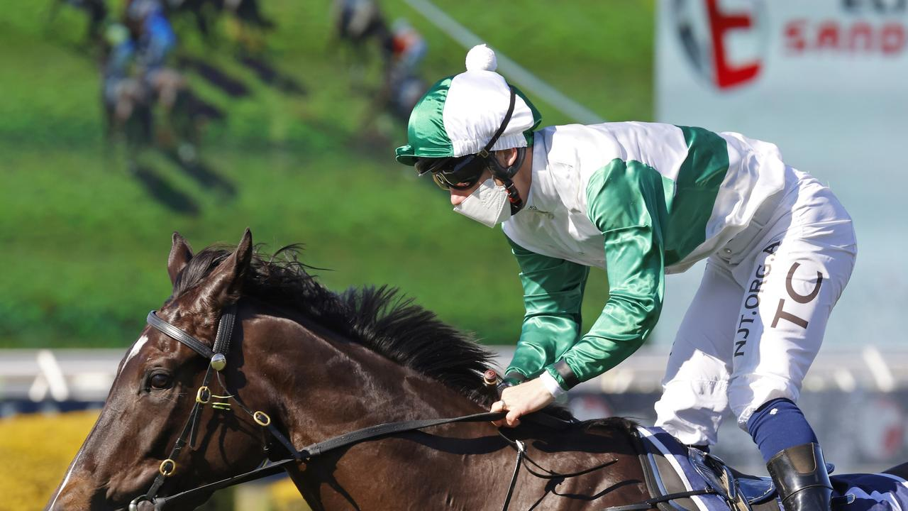 Silent Impact wins the opener at Rosehill under Tim Clark. Picture: Mark Evans–Getty Images