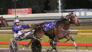 It was a masterful drive from Blaire Orange to land Amazing Dream a clear winner of the 2021 Blacks A Fake at Albion Park. Picture: Dan Costello