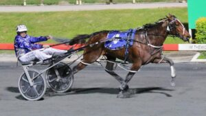 Blair Orange drives Amazing Dream to victory in the 2021 Blacks A Fake at Albion Park. Picture: Dan Costello