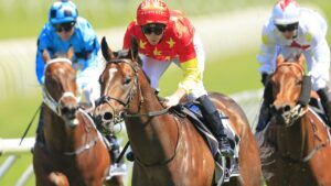 Wild Ruler is set for a big spring. Picture: Mark Evans–Getty Images