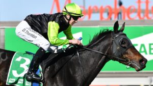Realm Of Flowers is guaranteed a start in the 2021 Melbourne Cup at Flemington. Picture : AAP.