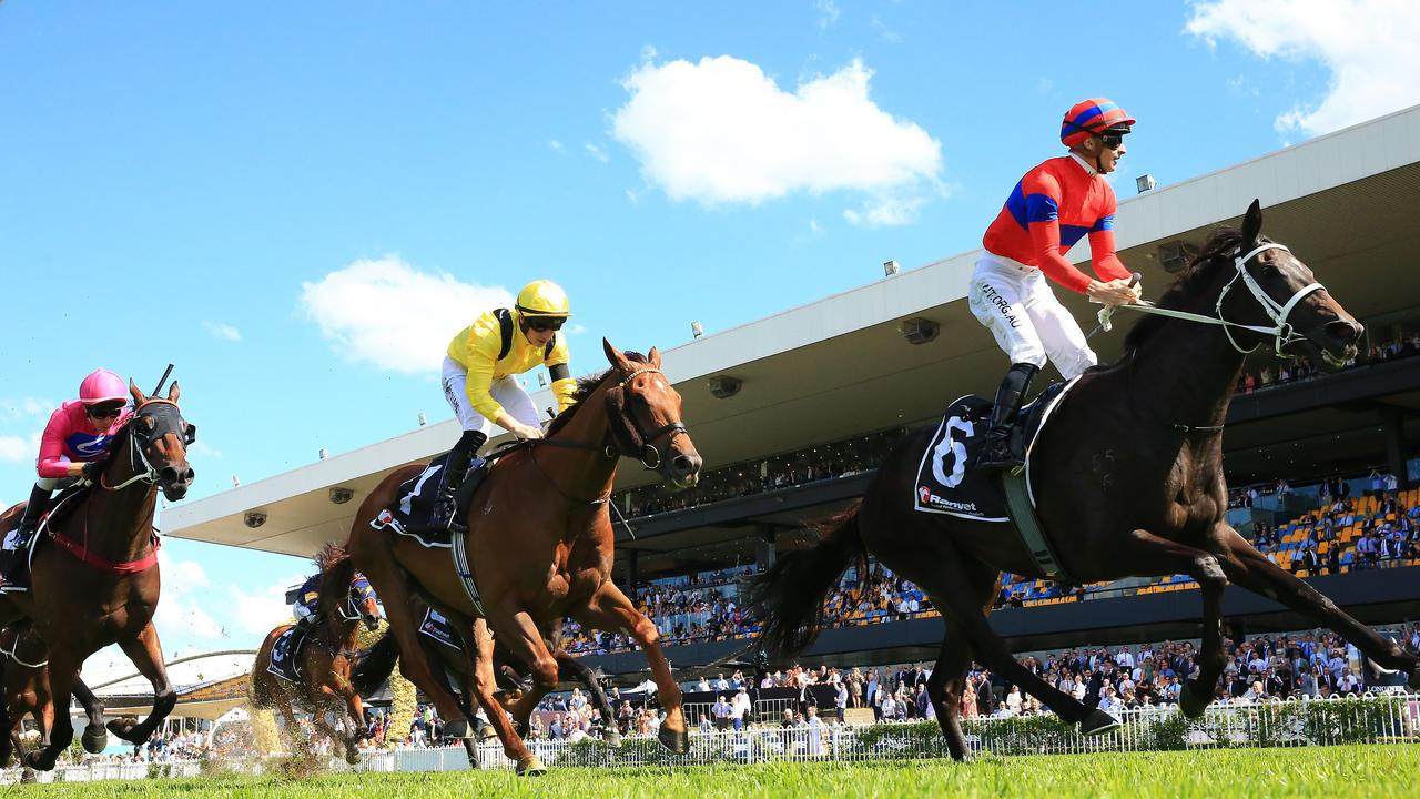 James McDonald on Verry Elleegant wins the Ranvet Stakes at Rosehill Gardens. Photo: Getty Images