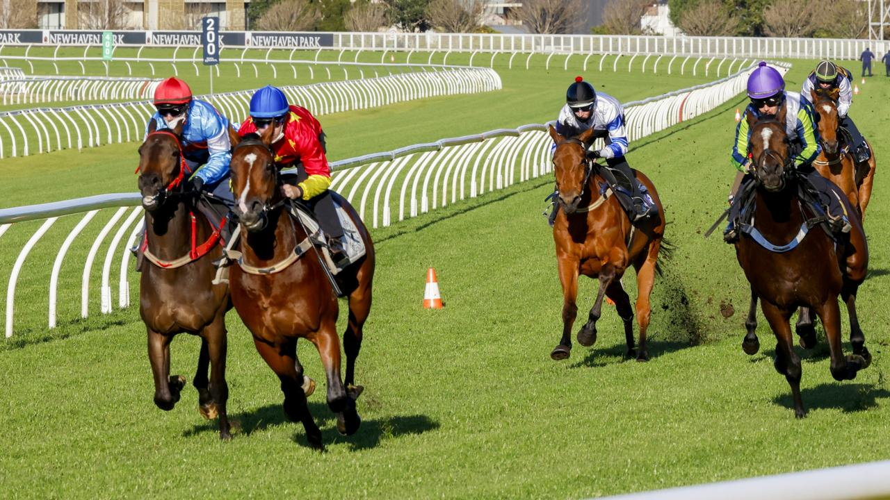 Stay Inside (blue cap) won the opening trial at Randwick with Tommy Berry on board. Picture: Getty Images