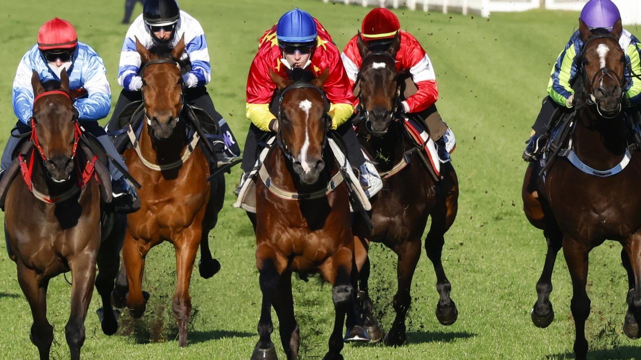 Tommy Berry (blue cap) guides Stay Inside to victory in a Randwick barrier trial on Tuesday. Photo: Mark Evans/Getty Images.