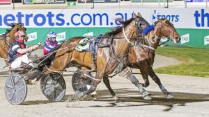 Melton's Tabcorp Park is the workhorse of the harness racing industry. Picture: Stuart McCormick