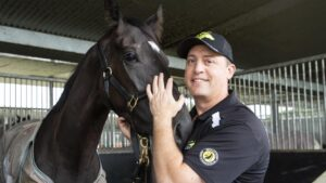 Tony Gollan has more to achieve in Queensland but hasn't ruled out a move interstate or even Hong Kong sometime in the future. Picture Lachie Millard