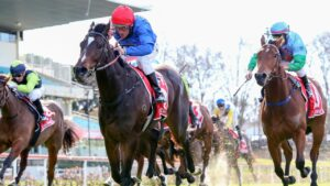Damien Oliver urges Zapateo to victory at The Valley. Picture: Racing Photos via Getty Images