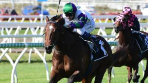 Jaden Lloyd rides to Alpine Edge to victory at Eagle Farm. Picture: Trackside Photography