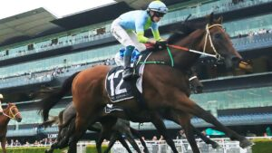 Is Sky Lab the horse to give Paul Perry his dream Australian race this spring? Photo: Mark Evans/Getty Images.