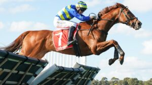 Wil John ridden by Willie McCarthy wins the Grand National Hurdle. Picture: Racing Photos