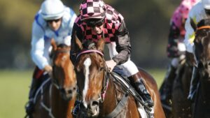 Rothfire won his trial on Tuesday morning as he prepares for a racetrack return. Picture: Getty Images