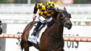 Probabeel is on track for a potential Memsie Stakes tilt. Picture: Getty Images