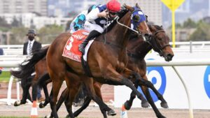 Victoria Derby wnner Johnny Get Angry will resume in Saturday's Group 3 Aurie's Star Handicap at Flemington. Picture : Racing Photos via Getty Images.