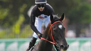 Fasika is the Missile Stakes favourite. Picture: AAP