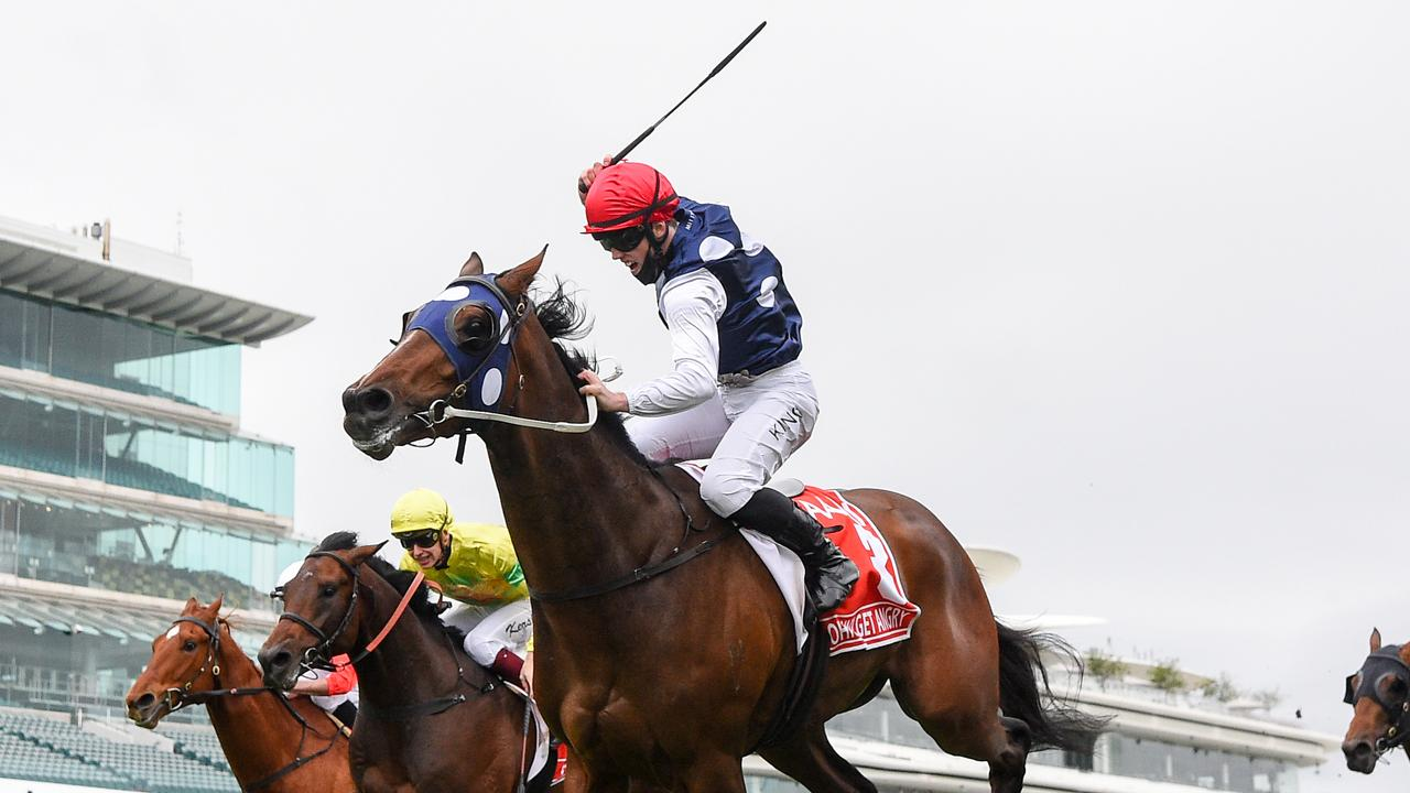 Victoria Derby winner Johnny Get Angry is set to return in the Aurie's Star Handicap at Flemington on Saturday. Photo: Pat Scala/Racing Photos.