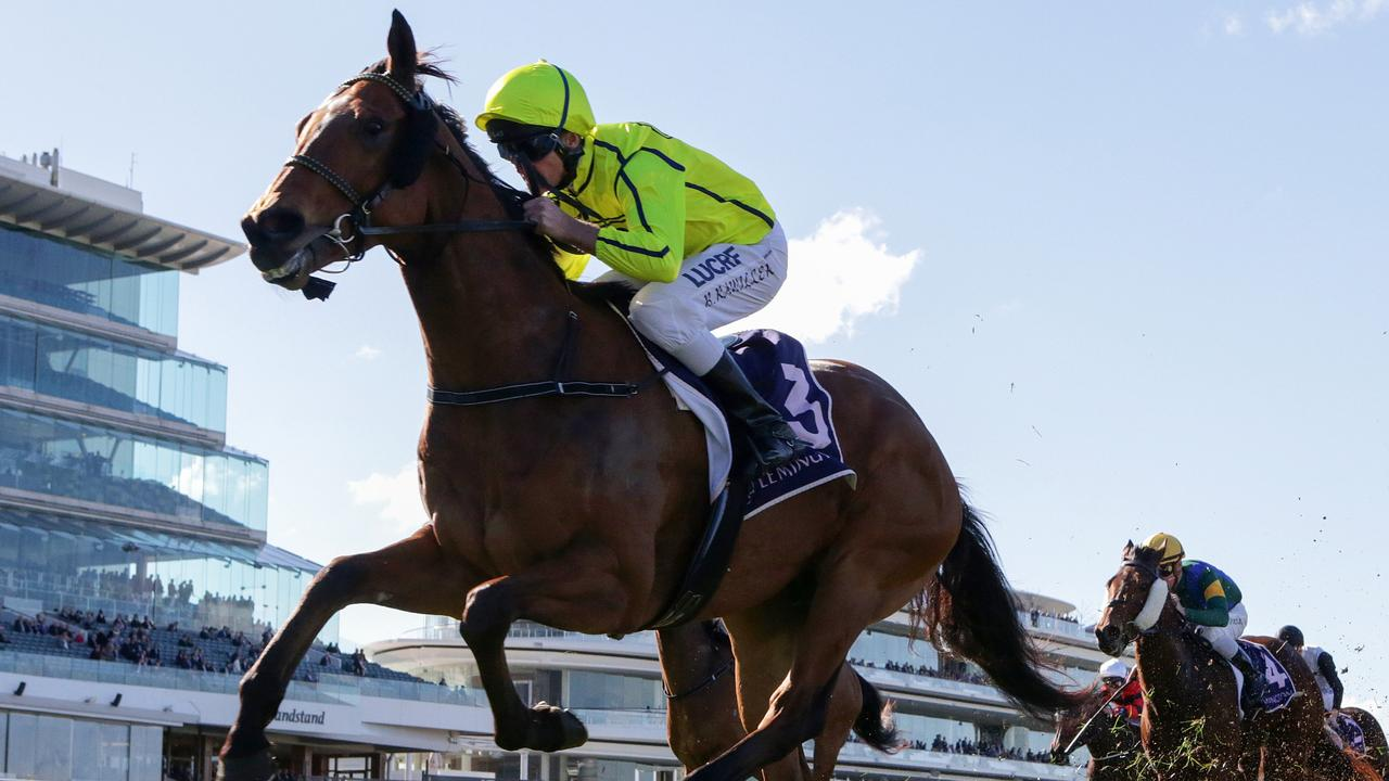 Sirius Suspect will again step out on his favourite in the Group 3 Aurie's Star Handicap at Flemington. Picture: AAP