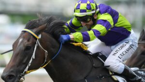 Fortification won the Townsville Cup. Picture: AAP
