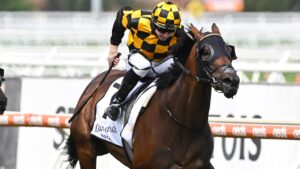 New Zealand mare Probabeel will miss the Group 1 Memsie Stakes at Caulfield. Picture: Getty Images