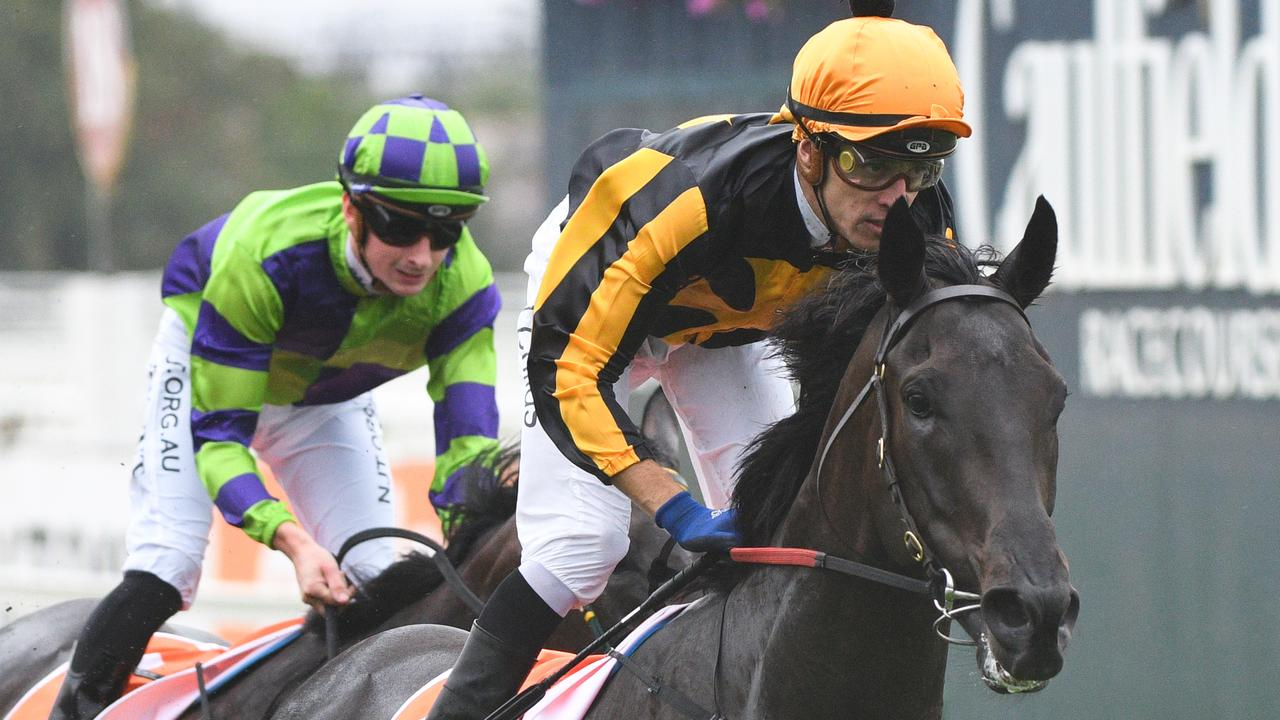 Nonconformist will start his Caulfield Cup assault in the PB Lawrence Stakes at Caulfield. Picture: AAP