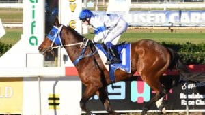 Fab's Cowboy winning at Bundaberg. Picture: Supplied