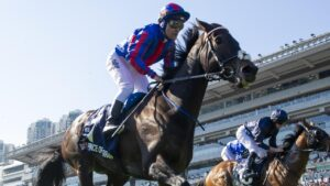 Prince Of Arran is an outside chance of returning for a fourth Melbourne Cup. Picture: AAP
