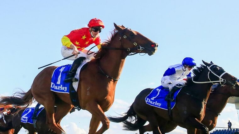 what-is-a-double-bet-in-horse-racing