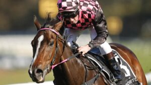 Jim Byrne on Rothfire winning the Run To The Rose at Rosehill Gardens last year. Picture: Mark Evans–Getty Images