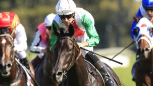 Top New Zealand four-year-old Aegon could resume in the Group 1 Memsie Stakes at Caulfield. Picture: Getty Images