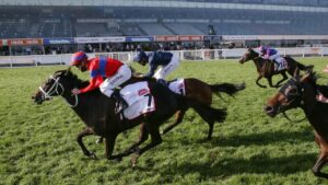 Verry Elleegant winning the Caulfield Cup in front of an empty grandstand last year. Picture: Racing Photos