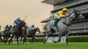 Berdibek has conditions to suit in the Rowley Mile at Hawkesbury. Picture: AAP