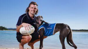 Melbourne Storm full back Ryan Papenhuyzen with greyhound Summer at Noosa. Picture: Lachie Millard