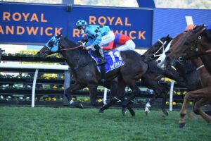 Mo'unga takes out the Winx Stakes at Randwick on Saturday. Photo: Steve Hart.