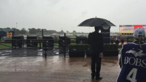 Light rain falling at Rosehill Racecourse in Sydney, Saturday, June 4, 2016. Heavy rain forecasted for Rosehill today means the likelihood the track will deteriorate. (AAP Image/Warren Barnsley) NO ARCHIVING