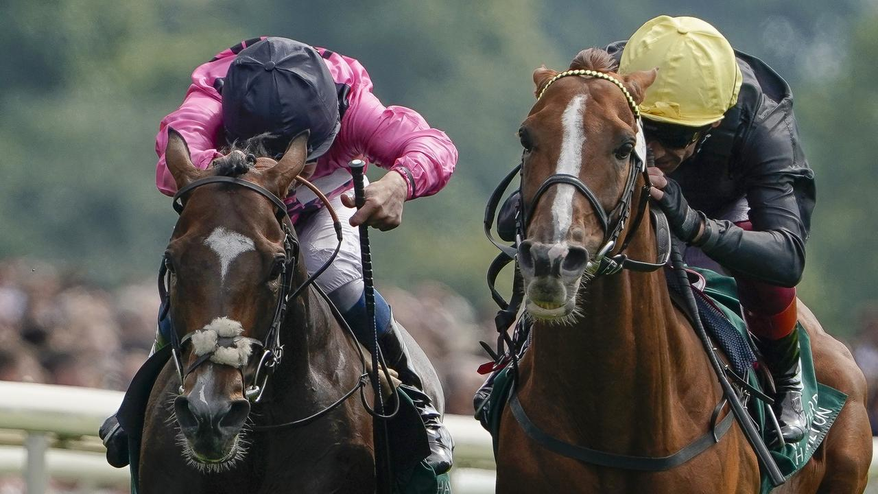 Spanish Mission (left) just goes down to Stradivarius (right) in last week's Lonsdale Cup at York. Picture: Getty Images
