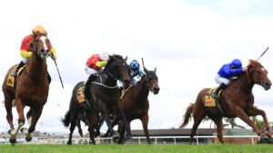 Stay Inside is nowhere to be seen in the finish of the San Domenico Stakes at Kembla on Saturday. Photo: Mark Evans/Getty Images.